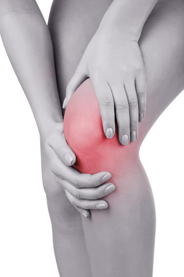 Chiropractic Marine City MI Knee Pain